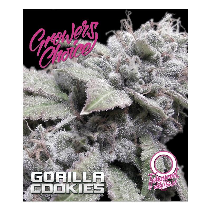 CANNA24-4 x Tropical Cookies Samen Kr/äuterm/ühle CANNA24 Grinder